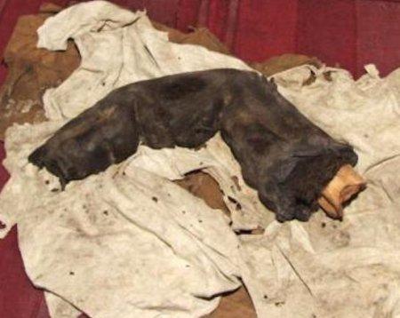 В Египте найден палец великана