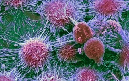Раковые опухоли держат часть мутаций «про запас»