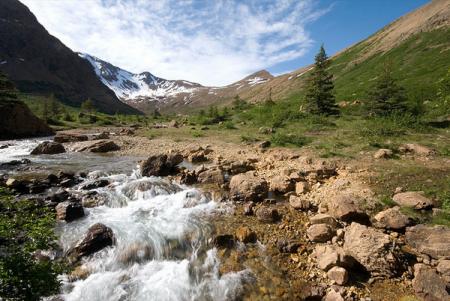 Отступление ледников уменьшает биоразнообразие водных экосистем