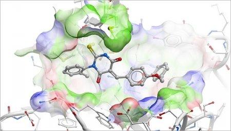 Новые данные о молекулярном механизме аутоиммунных заболеваний помогли разработать способ их лечения