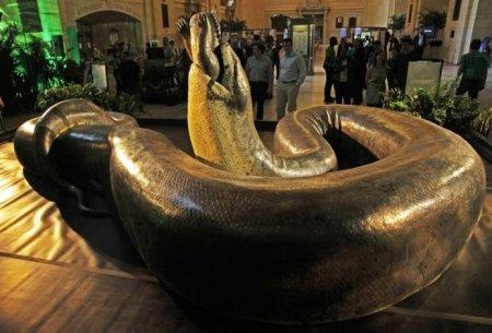 Огромная древняя змея может снова появиться на Земле