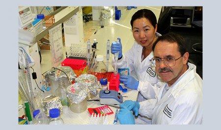 Употребление рыбы поможет остановить метастазы злокачественных опухолей