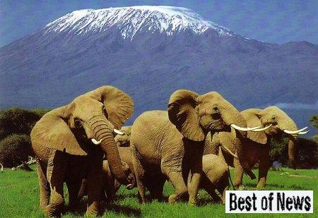 Таинственные руины Кении