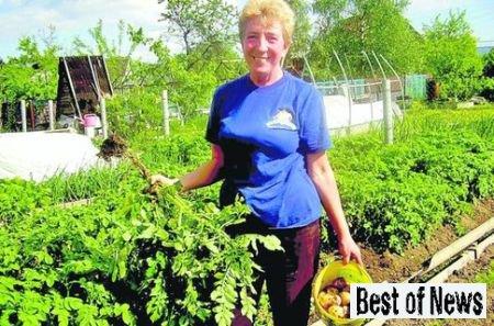 Самые главные советы садоводам
