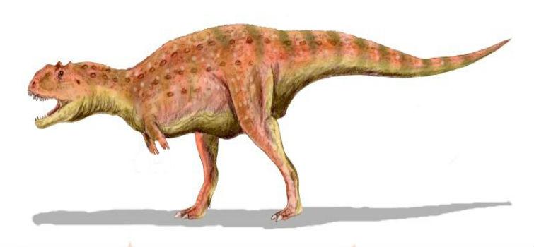 маюнгазавр