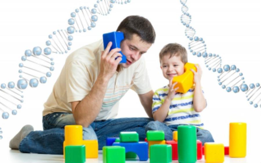 гены отца