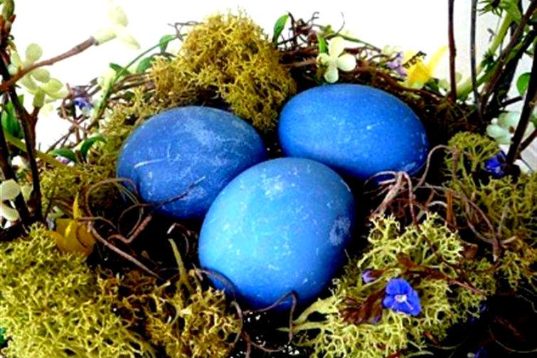 как покрасить яйца ягодами