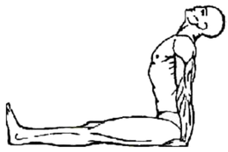 тибетское упражнение 3